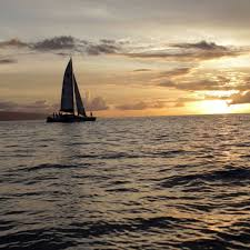 Product Champagne Sunset Sail